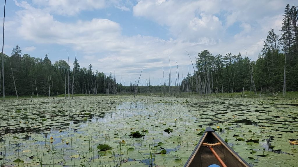 Land'escapes-paddling-the-park-experience